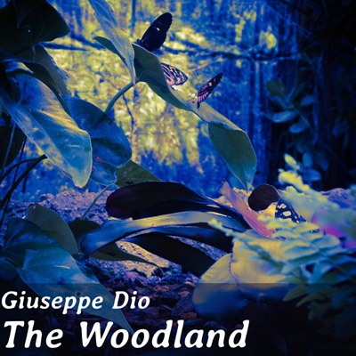 Giuseppe Dio, The Woodland